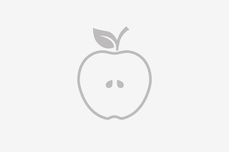 Jabučni ocat