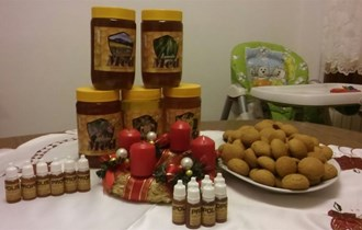 Domaći med i propolis