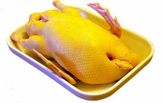 Domaća svježa patka sa jestivim iznutricama