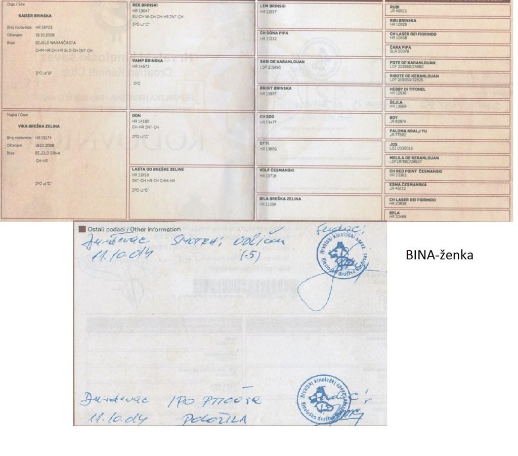 usluge šivanja narančasta županija cabesplatno ruski dating personals