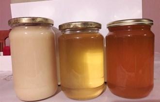 Domaći med