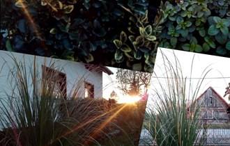Jesen je idealno vrijeme da za Vas obavimo mnoge radove u Vašem vrtu - ne čekajte proljeće!