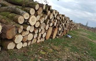 Prodajem drva hrast,grab,agacija,jasen