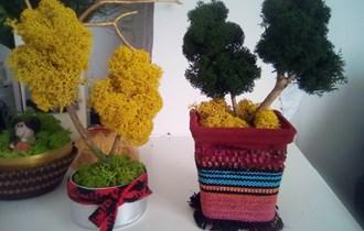 Dekorativna stabalca i ukrasi od stabilizirane mahovine i lišaja