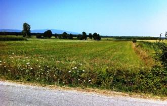 Poljoprivredno zemljište Zagreb - Okolica Kupinečki Kraljevec