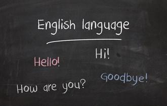 Engleski poduka + disleksija, ADD, posebne potrebe