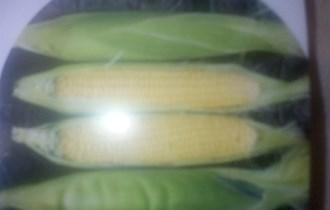 Kukuruz šečerac