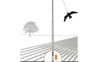 prvo učinkovito strašilo za ptice škodljivce