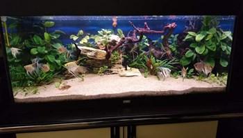 Akvari komplet