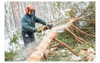 sjekači za rad u šumi