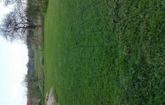 Kosnja trave,cijepanje drva rucno, krecenje i ostale usluge