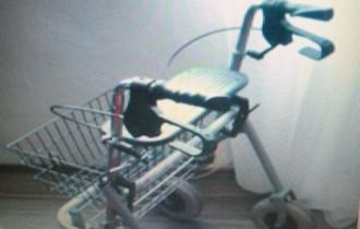 invalidska hodalica kolica za starije osobe
