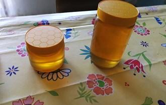 Med iz vlastitog pčelinjaka