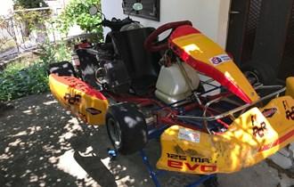 Karting Rotax 125 28Kw