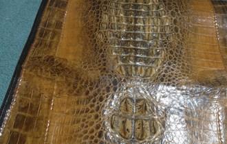Ženska torbica od krokodilske kože