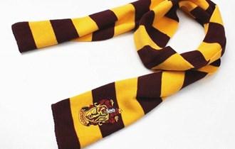 Harry Potter Šalovi