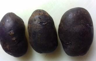 Plavi jestivi krumpir-najzdraviji krumpir