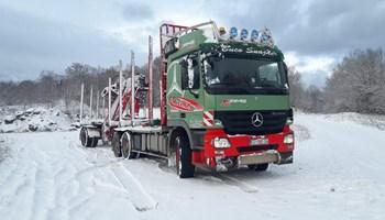 Mercedes- benz Actros 2644 šumar