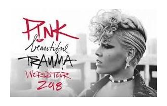 ULAZNICA ZA KONCERT PINK, 24.7.2019., BEČ