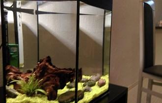 Mini akvarij