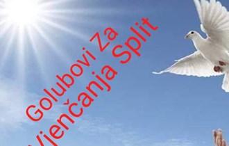 Bijeli golubovi 092 121 99 73