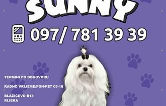 Sunny salon za pse
