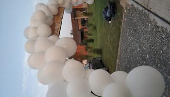 Balonske dekoracije za vjenčanja i razne proslave