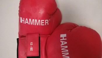Vreća za box i rukavice