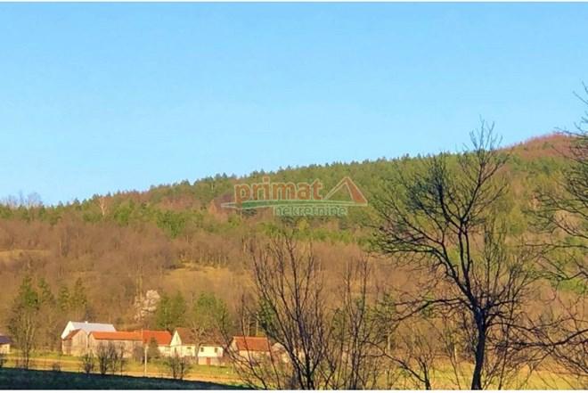 Prodaje se useljiva kuća s gospodarskim objektom i 2 hektara
