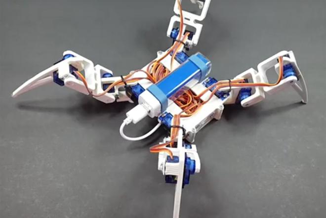 Robot pauk