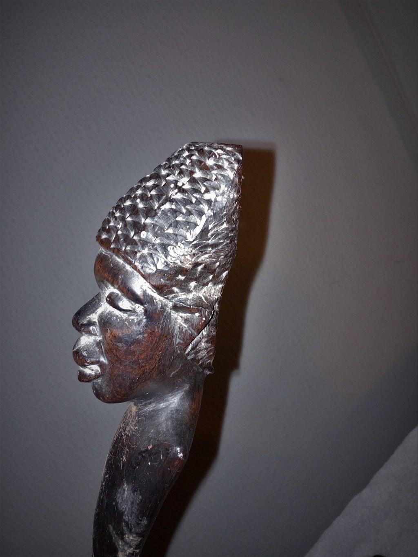 ebanovine afričke slike