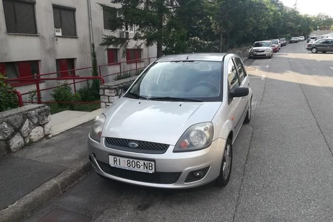 Ford Fiesta 1.4 - 2006. god., plin