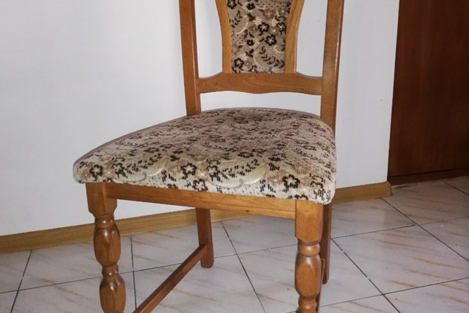 Prodajem stol i 8 stolica