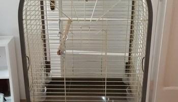 Kavez za pticu