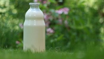 Kozje mljeko