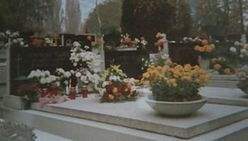 Mirogoj grobno mjesto rkt145 ll br. Groba 243 dobra lokacija sniženo privatna osoba