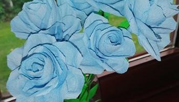 Ruže od krep papira - ručni rad