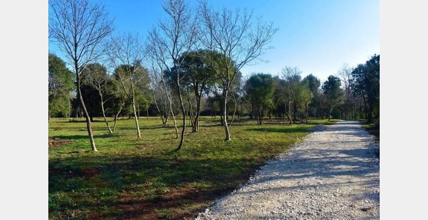 Poljoprivredno zemljište nedaleko Ližnjana