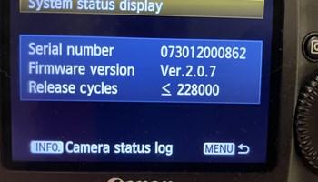 Canon 1 DX