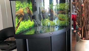 Prodajem (kutni) akvarij Juwel Trigon 190l