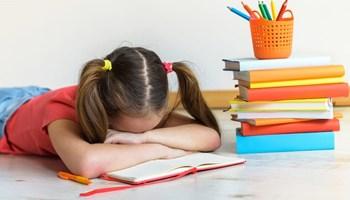 Instrukcije, pomoć pri učenju i pisanju zadaće