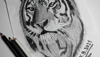 Crtanje slika po želji=)