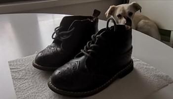 Dječje kožne cipele br: 20/21