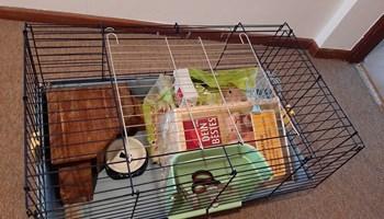 Kavez za zamorca ili hrčka