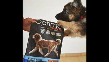 Optimanova hrana za pse