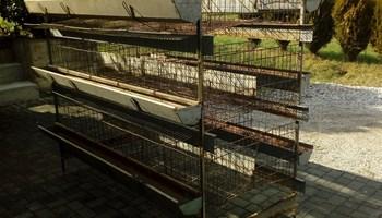 Prodajem kavez za kokoši nesilice