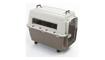 FERIA transporter za psa IATA standard