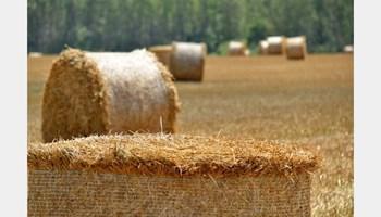 Tražimo djelatnike za rad na obiteljskom poljoprivrednom gospodarstvu