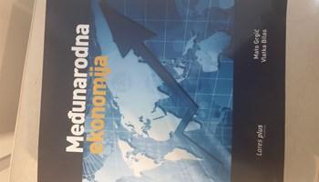 Međunarodna ekonomija, kao nova