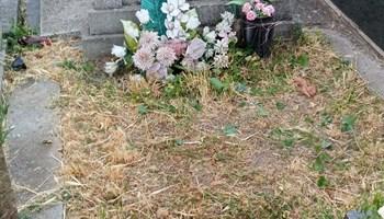Grobno mjesto na Novogradskom groblju u Osijeku